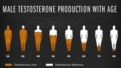 Understanding Your Total Testosterone